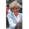 celebrities who died in car crashes Princess Diana